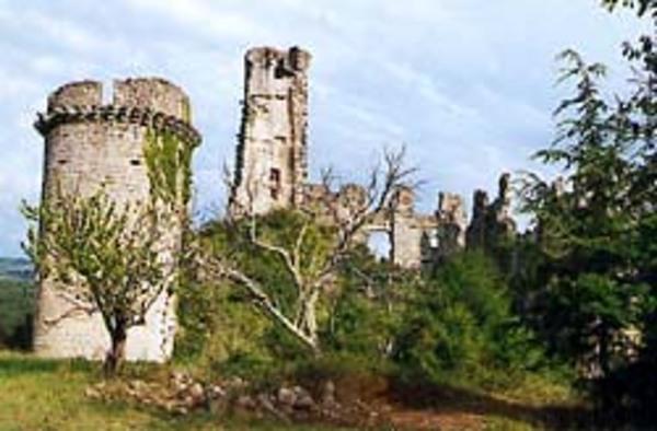 Crédits image : © Château-citadelle de l'Ardèche