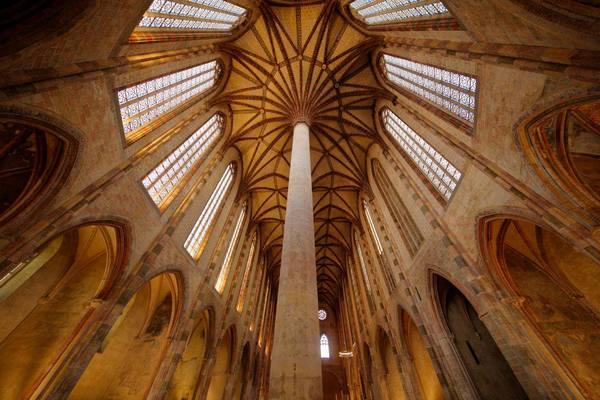 Crédits image : © Patrice Nin, ville de Toulouse