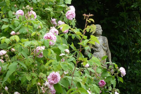 Rendez Vous aux Jardins 2018 -Les jardins de la Mansonière