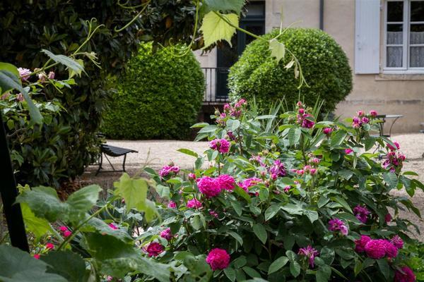 Rendez Vous aux Jardins 2018 -Jardin de la maison natale du marechal de lattre de tassigny