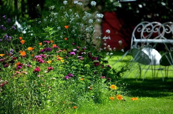 Rendez Vous aux Jardins 2018 -Un écrin de verdure