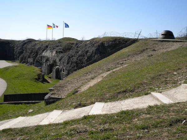 Crédits image : Visite guidée en forêt domaniale de Verdun - © ONF