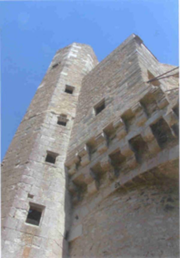 Journées du patrimoine 2017 - Forteresse médiévale de Billy