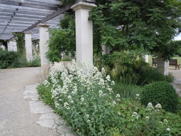 Rendez Vous aux Jardins 2018 -Parc de Blossac