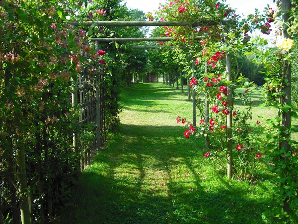 Rendez Vous aux Jardins 2018 -Les jardins de la ferme Ornée