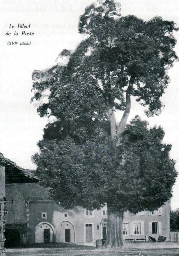 Crédits image : Ville de Gérardmer