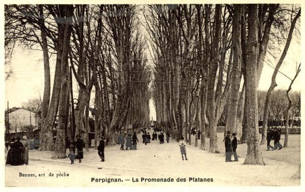 Crédits image : © Archives municipales de Perpignan